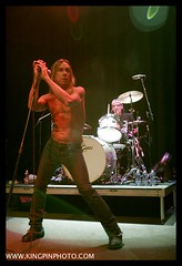 Iggy and the Stooges  _MG_4774.jpg