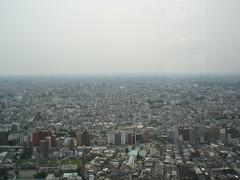 Tokyo Municipal Towers (16)