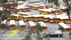 Schoolbus Heaven