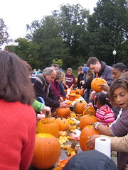Pumpkin Fest in Boston