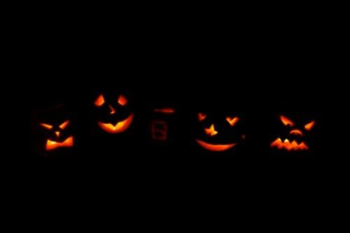 Halloween Pumpkins 2005