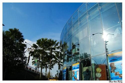 Esplanade-Glass-Windows