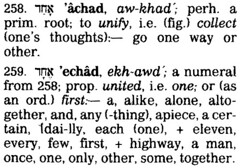 "Strong's on ""echad"""