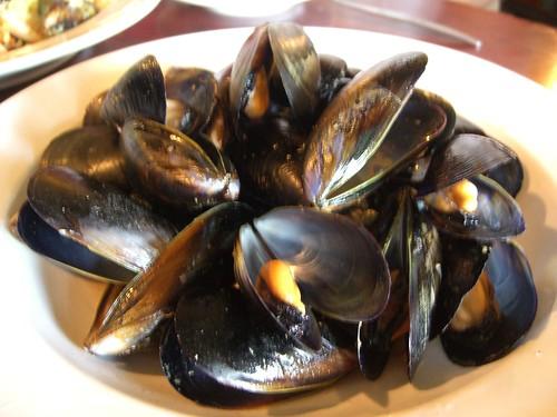 Chilli Mussels - Attitudes