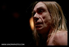 Iggy and the Stooges  _MG_4700.jpg