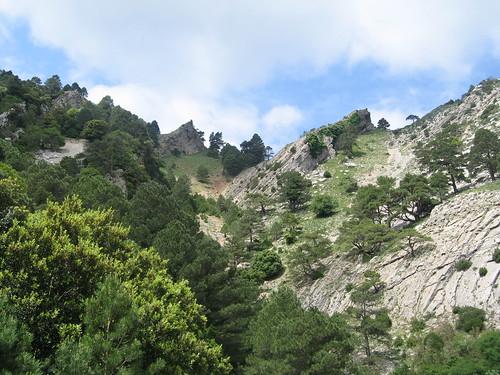 Coll de la Gilaberta