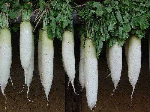 Dried daikon radish