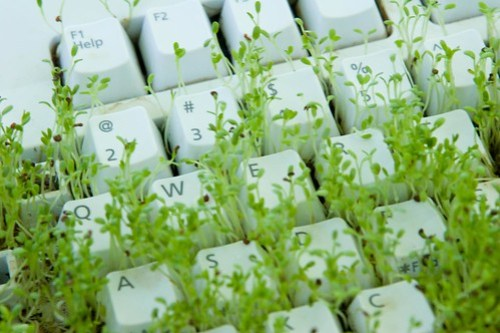 Grow Grass on the Keyboard