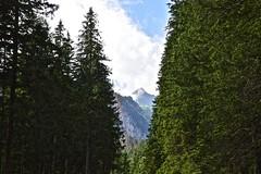 Tatra Mountains, Polonia