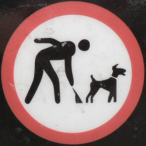Clean up after your dog... or else!