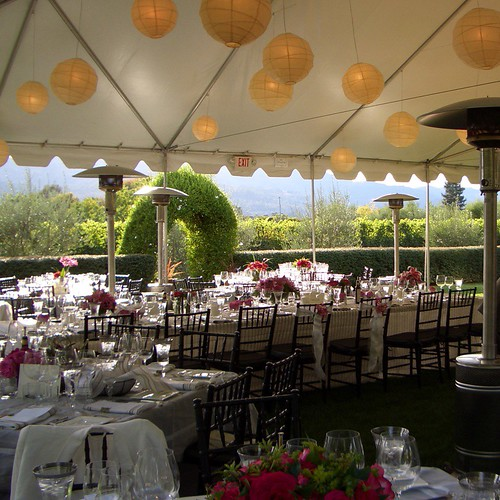 Reception Tent by advencap.