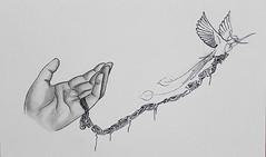 Hand-and-Bird-AP