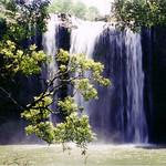 "NZ North Island Waterfall <a style=""margin-left:10px; font-size:0.8em;"" href=""http://www.flickr.com/photos/36521966868@N01/4281443/"" target=""_blank"">@flickr</a>"
