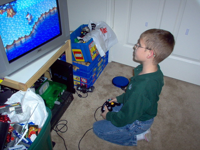 Child Playing Video Games (Animal Crossing)