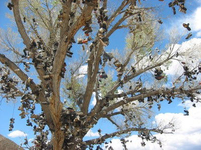 Shoe tree, off route 50 somewhere in Nevada © Lee Otis