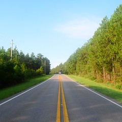 The Road Ahead. Day 94. Rt. 31 in Stapleton, AL. Gonna be at the coast today! #TheWorldWalk #travel #wwtheroadahead