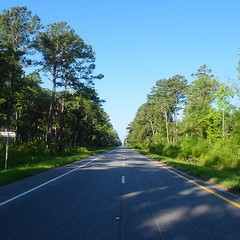 The Road Ahead. Day 62. Charleston Hwy in Yemassee, SC. Hot and humid today. #TheWorldWalk #travel #sc #wwtheroadahead