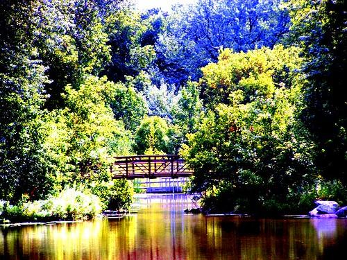 Bridge over saturated water