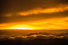 Golden Skyes