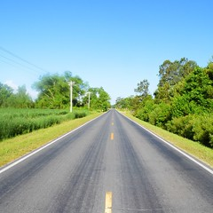The Road Ahead. Day 43. Laurel Rd in North River, NC. #TheWorldWalk #nc #travel #wwtheroadahead