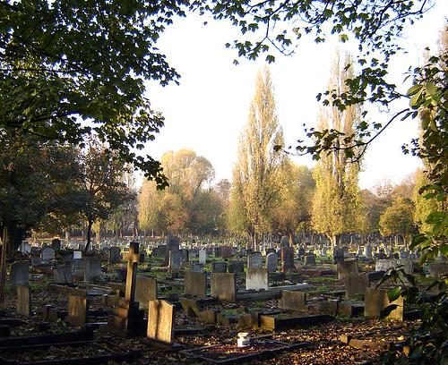 Tottenham Cemetery, by Fin Fahey