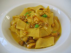 Paparadelle, saffron chicken ragu and english peas
