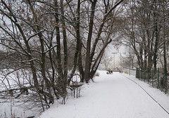 White Prague and frozen ponds