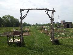 "Oak Street Garden 2 • <a style=""font-size:0.8em;"" href=""http://www.flickr.com/photos/61175668@N08/18497119150/"" target=""_blank"">View on Flickr</a>"