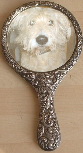 Whats in your mirror?  Courtesy:  Lamerie/Flickr