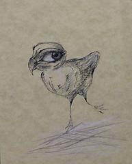 birdy-bird-birdy-eric-crocker