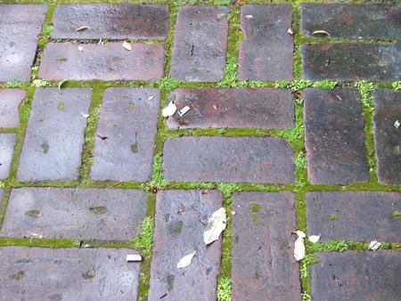Christchurch pavement