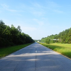 The Road Ahead. Day 64. Rt.17 in Limehouse, SC. Spent an hour clearing ants out of my cart this morning, was loads of fun. Now, headed into Savannah, GA. #TheWorldWalk #travel #sc #wwtheroadahead