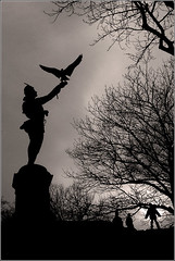 The Falconer of Central Park
