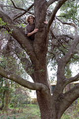 """IMG_4243: Ben Climbs a Tree • <a style=""""font-size:0.8em;"""" href=""""http://www.flickr.com/photos/54494252@N00/8456332/"""" target=""""_blank"""">View on Flickr</a>"""