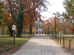 Towards King Library