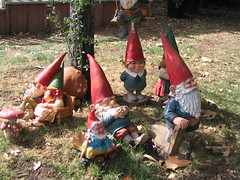 Gnomes in Stars Hollow
