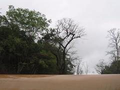 Kollibacchalu Dam -Malenadu Heavy Rain Effects Photography By Chinmaya M.Rao   (60)