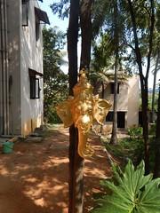 The Legend Kuchipudi Dancer Dr. Vyjayanthi Kashi's Shambhavi School of Dance Outside Photography By Chinmaya M.Rao  (253)
