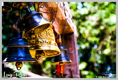 Beautiful carved bells remind me of History chapter of Ashoka empire