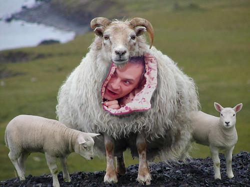 como una cabra