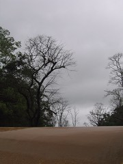 Kollibacchalu Dam -Malenadu Heavy Rain Effects Photography By Chinmaya M.Rao   (55)
