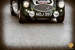 PetraSagnak_classiccar-photo.de-6053
