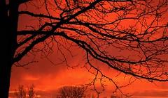 A Denver Sunrise
