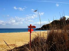 Ikaria 170 (isl_gr (Mnesterophonia)) Tags: beach reeds island sand solitude hiking ikaria  aegean trails experiment replacement greece signage kampos hikingikaria  caria  trailoftheelves voutsides