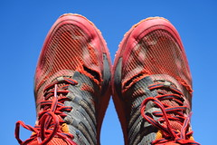 Brooks Cascadia 10 - I've got holes in my shoes, and not only where my feet are supposed to fit...