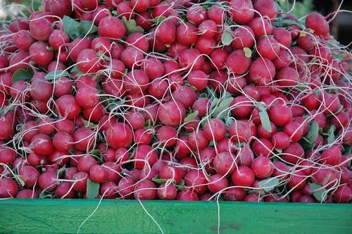 More radishes