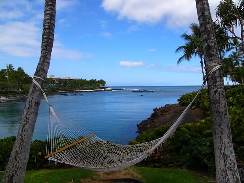 afternoon hammock