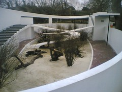 Lubetkin's Penguin pool: no more penguins - fidothe's photos on Flickr