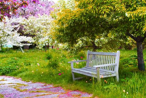 Spring Impressionism by WisDoc
