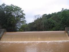 Kollibacchalu Dam -Malenadu Heavy Rain Effects Photography By Chinmaya M.Rao   (93)